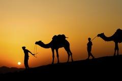 Kontur av kamelaffärsmannen över sanddyn Arkivbilder