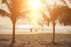 Kontur av palmträd på solnedgången, tappningfilter Royaltyfri Fotografi