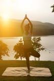 kontur av praktiserande yoga för asiatisk gravid kvinna på gröna gras Arkivfoto