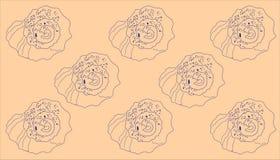 Kontur av rapanaskal på en beige bakgrund vektor illustrationer