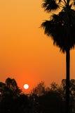 Kontur av solnedgången Royaltyfri Foto