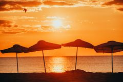 Kontur av strandparaplyer Arkivbild