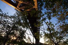 Kontur av träd under helveteportbron Arkivbilder