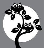 Kontur av två svarta ugglor i ett träd royaltyfri illustrationer