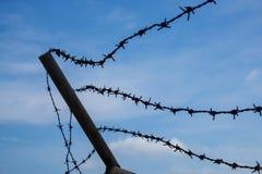 Kontur Barb Wire i en härlig blå himmel Royaltyfri Foto