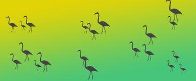 Kontur för flock för grupp för flamingo för titelradbakgrundsfåglar stock illustrationer