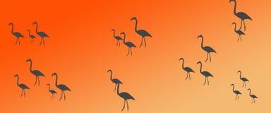Kontur för flock för grupp för flamingo för titelradbakgrundsfåglar vektor illustrationer