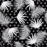Kontur för sömlös modell för vektor tropisk härlig konstnärlig vektor illustrationer