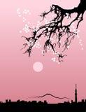 Kontur för svart för Tokyo stadshorisont på naturlig sakura bakgrund vektor Stock Illustrationer