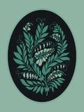 Konturbönaväxt i ovalen Royaltyfria Bilder
