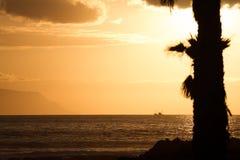 Konturen von Palmen bei Sonnenuntergang Auf Hintergrund - Berge und Schiff Lizenzfreies Stockfoto