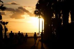 Konturen von Palmen und Leuten bei Sonnenuntergang Sepia Lizenzfreie Stockbilder