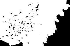 Konturen von Vögeln und von Gebäuden gegen den Himmel stockfotos