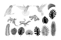 Konturer av ödlor, gecko och tropisk banan, gömma i handflatan, monsterasidavektorn vektor illustrationer