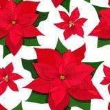 konturer av blommor på en vit bakgrund Sömlös modell för kulör vektorillustration Isolerat på vit vektor illustrationer