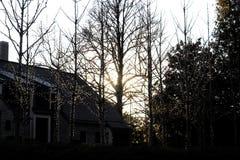 Konturer av den lilla trädyttersidan som strängas med julljus mot ett mörkt hus och större träd på skymning fotografering för bildbyråer