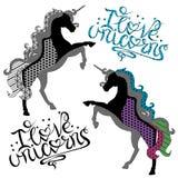 Konturer av enhörningar med royaltyfri illustrationer