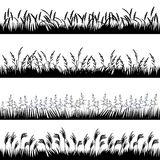 Konturer av olika örter med spikelets Arkivbild