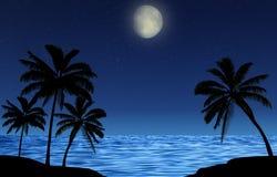 Konturer av palmträd på natten vid havet med en stjärnklar himmel och en glänsande måne Romantiker landskap Royaltyfri Fotografi