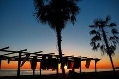 Konturer av palmträd vid havet på en solnedgångbakgrund Strand Royaltyfri Bild