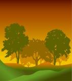 Konturer för skogträd Royaltyfri Illustrationer