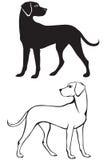 konturhundsilhouette royaltyfri illustrationer