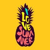 Konturn av ananas och kulör text älskar jag sommar vektor Royaltyfri Foto
