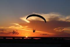 Konturn av en driven paraglider, paramotor som är främst av en spektakulär orange aftonhimmel i sydliga Texas, USA fotografering för bildbyråer