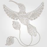 Konturowy abstrakcjonistyczny wizerunek Hummingbird Obrazy Stock