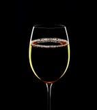 Konturowy szkło aromatyczny wino na czarnym tle Zdjęcie Stock