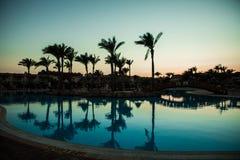 Konturpalmträd med paraplystolpölen i semesterort för lyxigt hotell på soluppgångtider Sommarkall royaltyfria foton