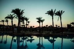 Konturpalmträd med paraplystolpölen i semesterort för lyxigt hotell på soluppgångtider Sommarkall arkivbilder