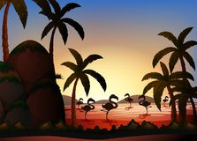 Konturplats med flamingofåglar i floden Royaltyfria Bilder