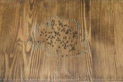 Konturträdet av spikar på träbakgrund Royaltyfri Fotografi