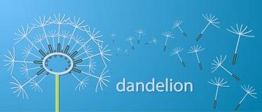 Konturu dandelion kwitnie aplikacyjnego sztandar Obrazy Royalty Free