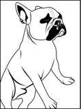 Konturu mopsa pies ilustracji