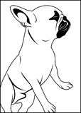 Konturu mopsa pies ilustracja wektor