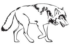 konturwolf stock illustrationer
