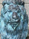 Konung av djungeln, det storartade lejonet Arkivbild