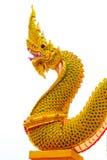 Konung av naga på isolerad bakgrund jpg Arkivfoton