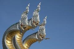 Konung av Nagas Fotografering för Bildbyråer