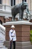 Konung Guard royaltyfria bilder