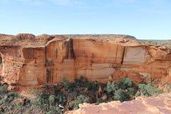 Konung kanjon Arkivbild