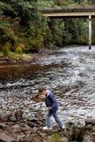 Konung River Tasmania Fotografering för Bildbyråer