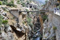 Konung` s går malaga andalucia Spanien Royaltyfria Foton