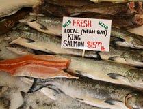 Konung Salmon royaltyfria bilder