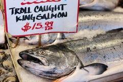 Konung Salmon On Ice Royaltyfri Fotografi