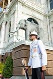 Konungar bevakar i storslagna Royal Palace Royaltyfri Fotografi