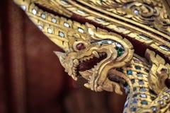 Konungen av nagas royaltyfri foto