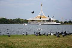 Konungen Rama IX parkerar royaltyfria foton